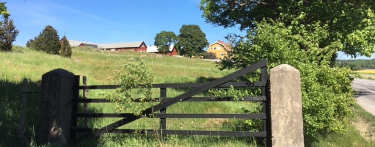 Libby Gård i BROTTBY,  en fårgård nära Stockholm